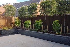 Raised planter clad in Marshalls Stoneface with pleached photinia
